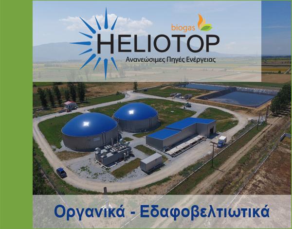 heliotop